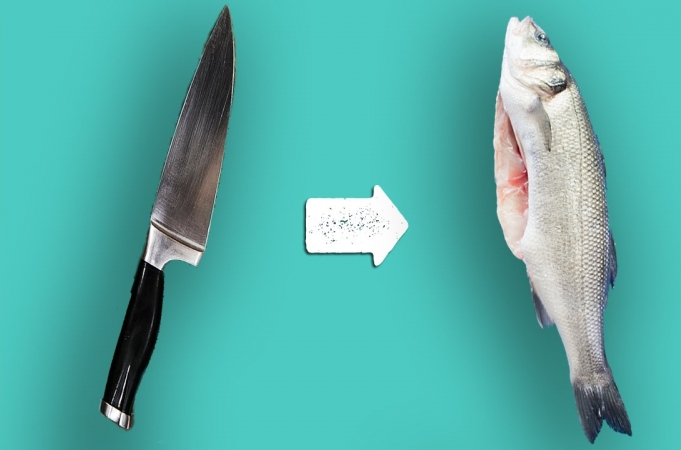 How To Gut A Fish