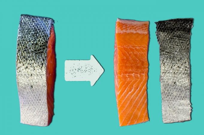 How To De-Skin A Fish Fillet
