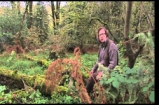 Jamie Saves our Bacon - Hugh Fearnley-Whittingstall