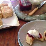 gluten-free scones with homemade jam and cream