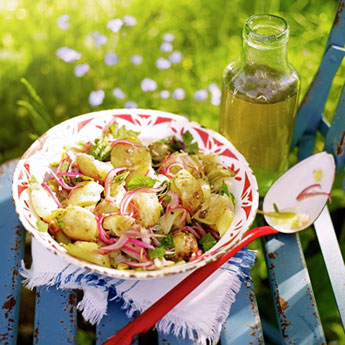 Our favourite recipes for the great outdoors