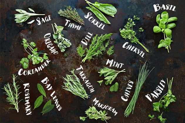 How to cook with herbs | Features | Jamie Oliver | Jamie Oliver