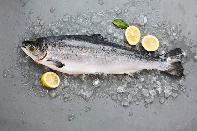 salmon dishes - a large salmon surrounded by slices of lemon and ice