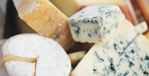 an array of cheese selections
