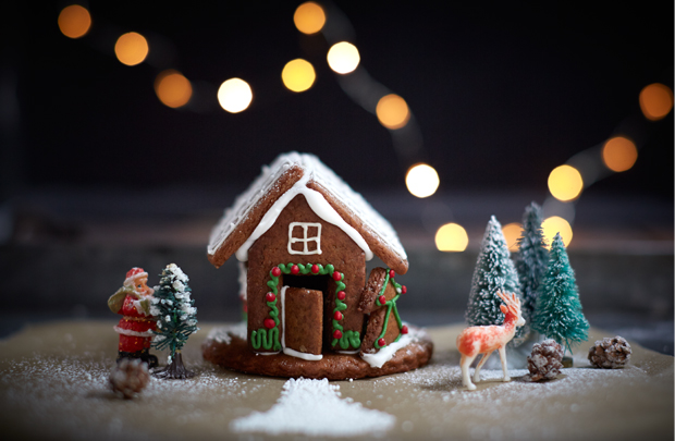 Bee's Bakery's gingerbread house recipe