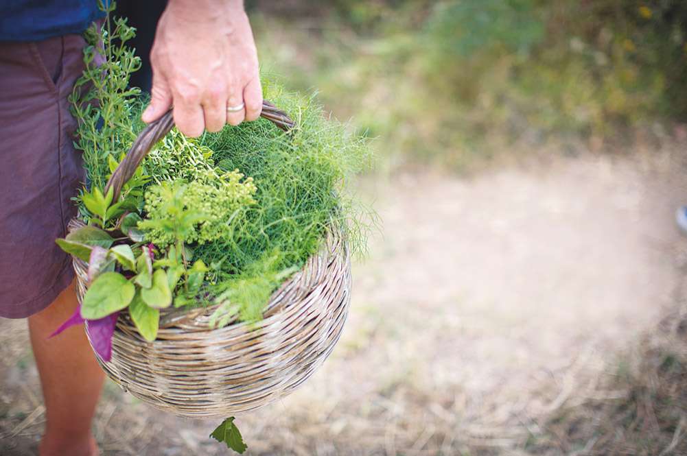 a basket filled with green herbs and veg
