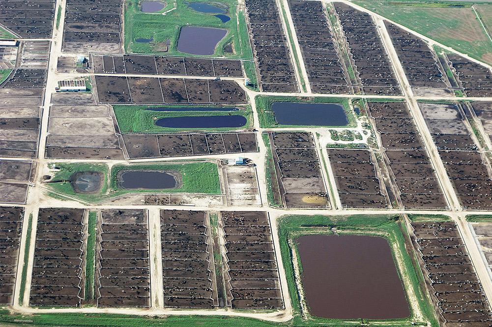 TTIP aerial image of field