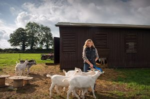Free-range kid goat meat: the sustainable choice