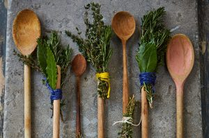 How to make a herb brush