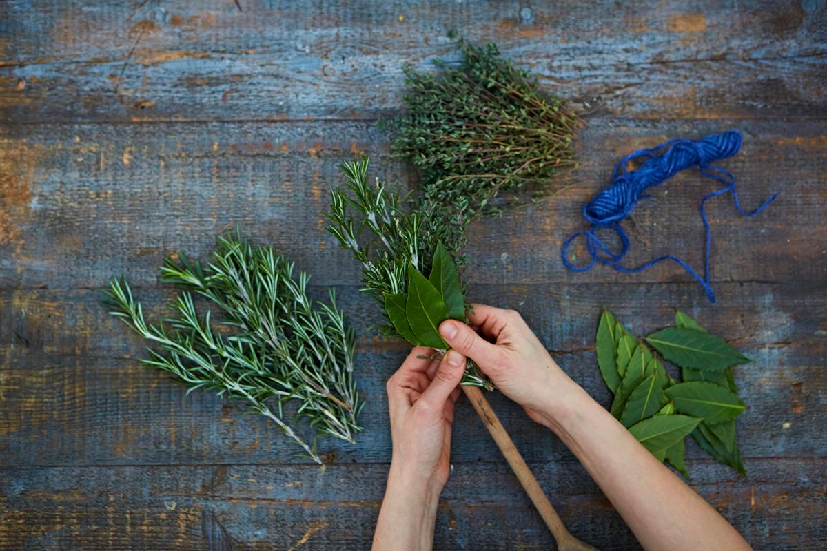 herbbrush2