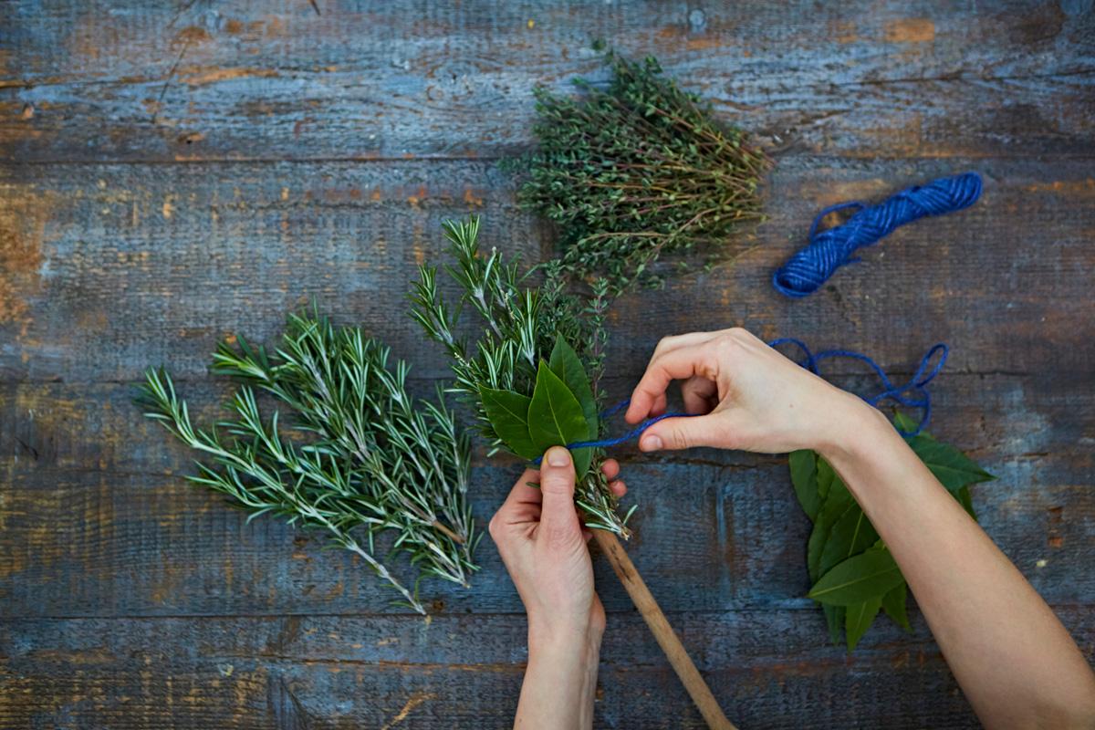 herbbrush3