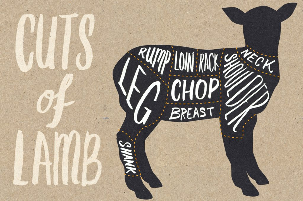lamb cuts image of lamb sections