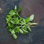 seasonal vegetables to eat in May