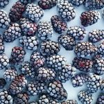 frozen blackberries scattered flat lay