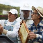 save our bees campaign - bee farmers