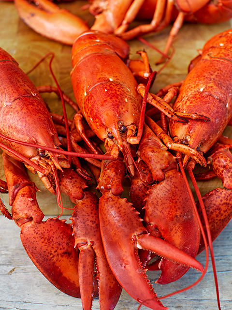 How to cook lobster | ...
