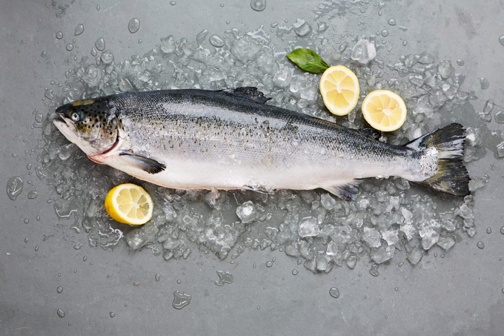 The ultimate guide to salmon