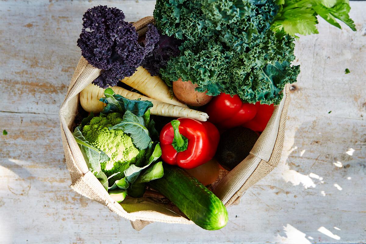 Social supermarkets shopping basket