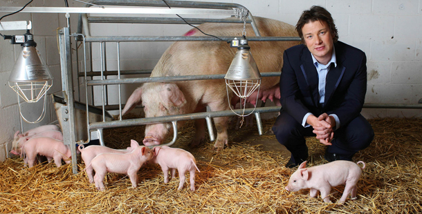 jamie oliver animal welfare