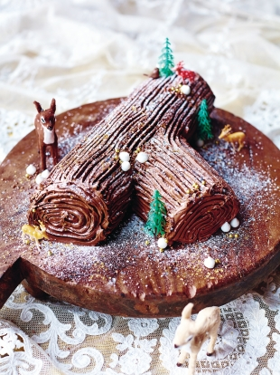 Image result for chocolate log images