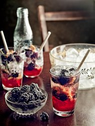 Berry & rosemary juniper gin fizz