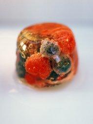 Summer fruit jellies